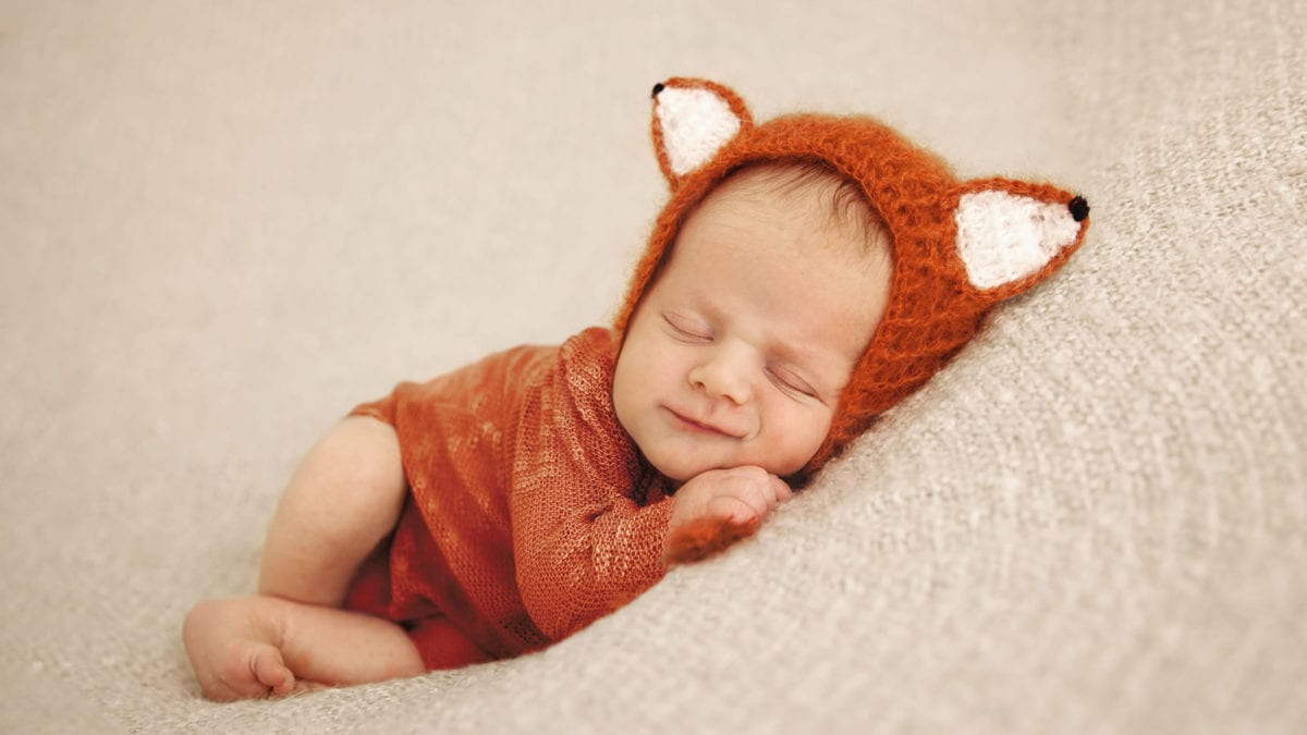 Photograph of cute newborn baby in fox outfit in east yorkshire